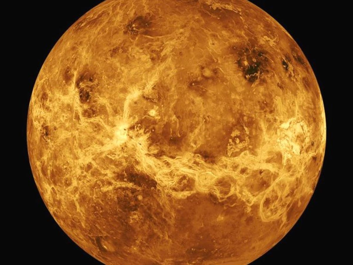 Venus spiral goblet taku nakano venus spiral goblet voltagebd Image collections